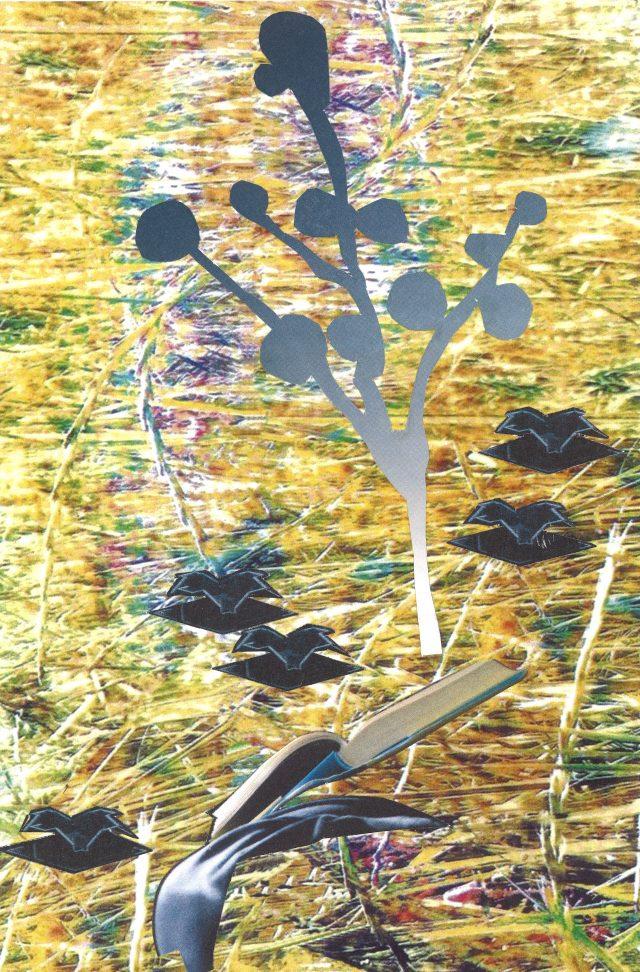 L'arbre dans la prairie – 015